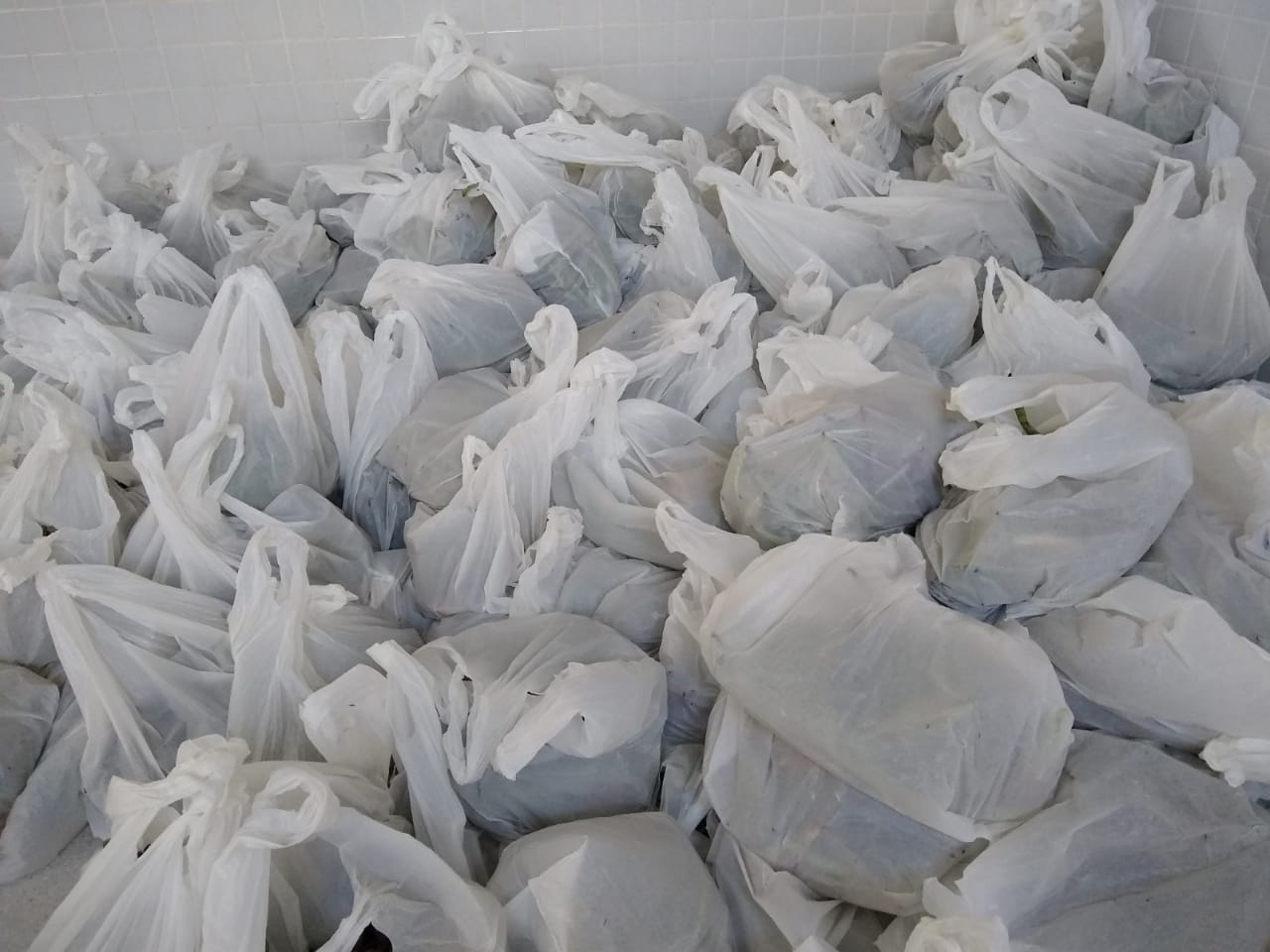 Prefeitura entrega três toneladas de alimentos para famílias do bairro Mutirão II