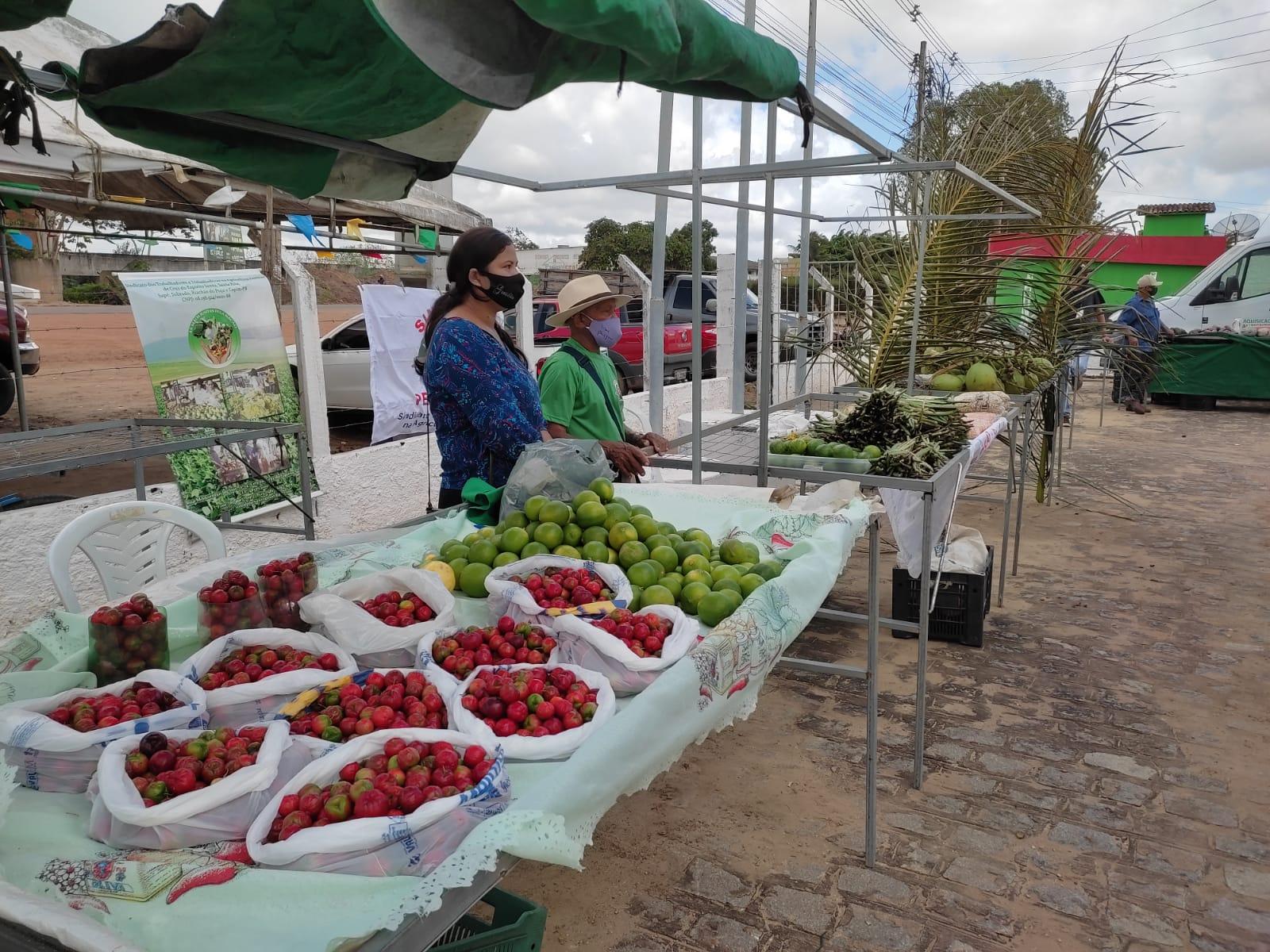 Dia do Agricultor em Sapé tem ação para valorizar produtores agroecológicos